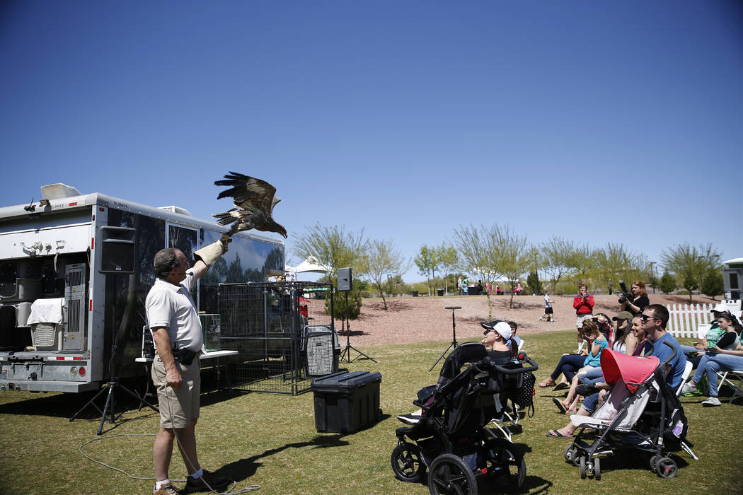 Joe Krathwohl, The Birdman, holds a Steppe Eagle during a show at the Going Green Earth Day event at Huckleberry Park in Las Vegas, Saturday, April 21, 2018. Erik Verduzco Las Vegas Review-Journal ...