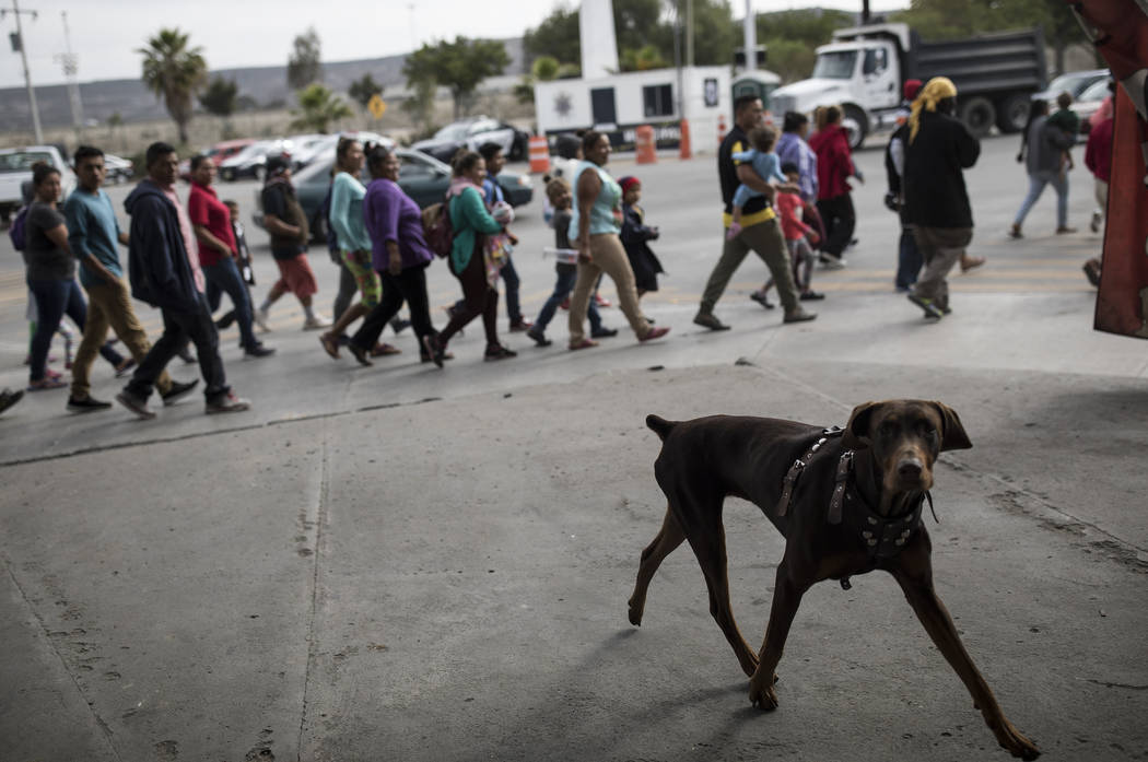 Migrants walk to the place where they will be meeting with immigration lawyers, seeking to enter the United States from Tijuana, Mexico, Friday, April 27, 2018. (AP Photo/Hans-Maximo Musielik)