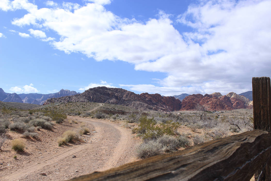 Red Rock Canyon Courtesy Preserve Nevada