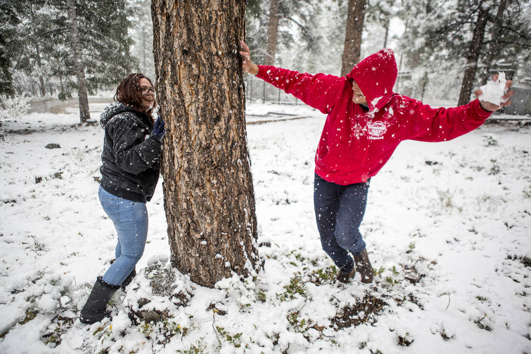 "Zack Schneider looks around a tree to throw a snowball at Cassea Overton near the Cathedral Rock trailhead at Mount Charleston on Tuesday, May 1, 2018. ""I heard my brother talking about the w ..."