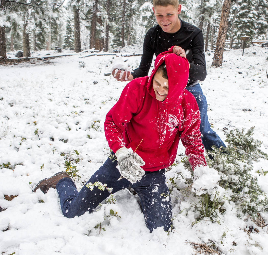 "Jeff Schneider tries to put snow on his brother Zack's face near the Cathedral Rock trailhead at Mount Charleston on Tuesday, May 1, 2018. ""I heard my brother talking about the weather at Mt. ..."
