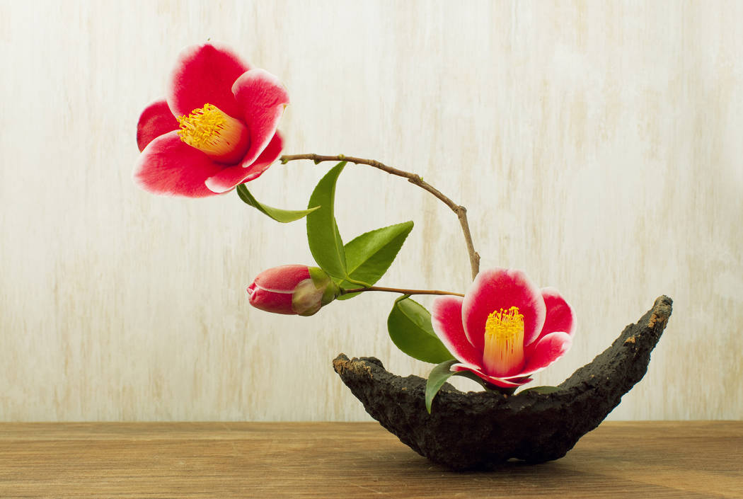 Thinkstock Members of Ikenobo Ikebana learn the art of Japanese flower arranging. Club participants learn traditional as well as modern design styles and freestyle.