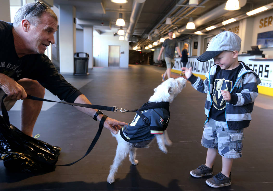 Bark-Andre Furry and his owner, Rick Williams, say hello to 3-year-old Griffin Schwarz of Las Vegas before Vegas Golden Knights practice at City National Arena in Las Vegas on Wednesday, May 9, 20 ...