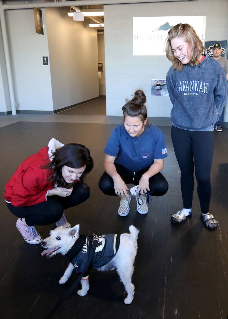 Hailey MacCachren, from left, Audrey Ulitchny and Emily Irvine, all of Las Vegas, visit with Bark-Andre Furry during Vegas Golden Knights practice at City National Arena in Las Vegas on Wednesday, ...