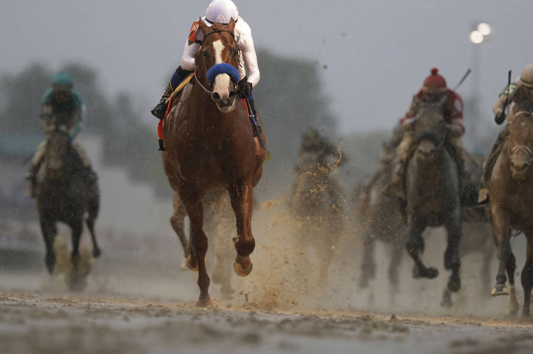 Justify starts favorite at preakness with kentucky derby win