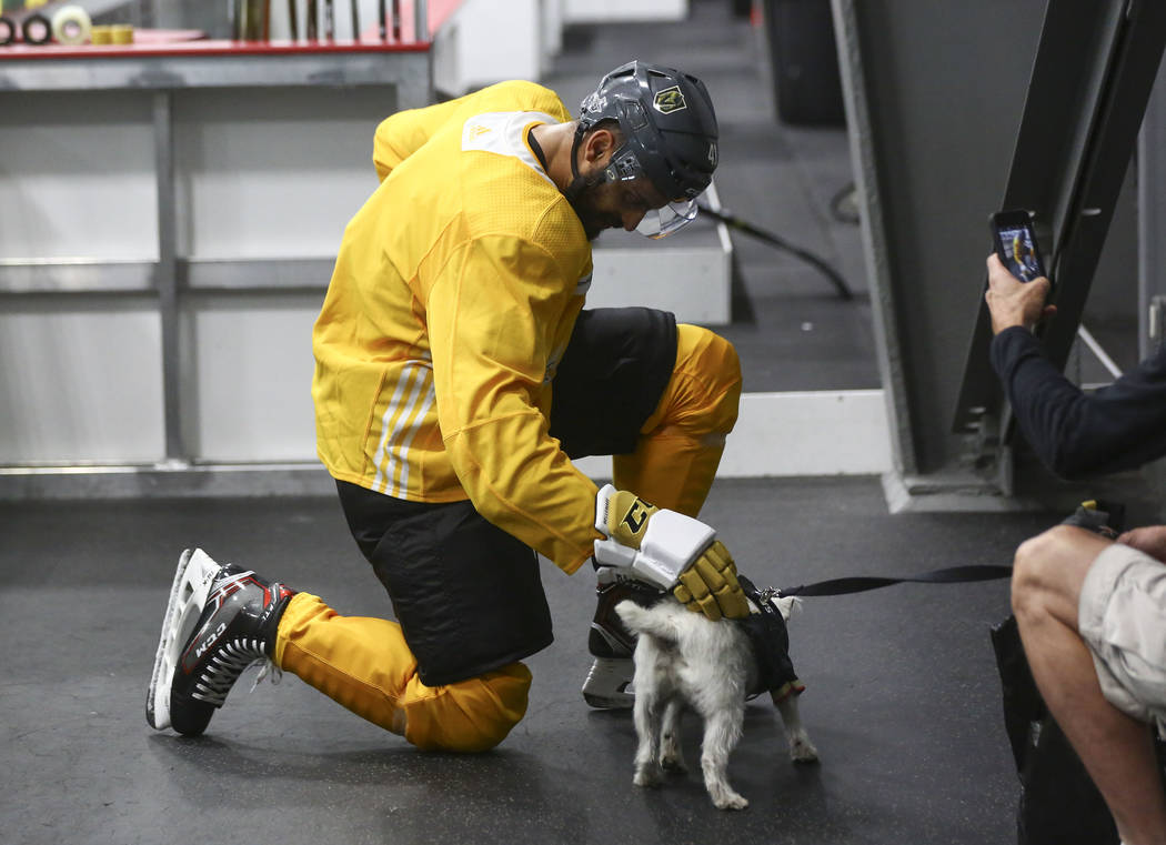 Golden Knights left wing Pierre-Edouard Bellemare greets Bark-Andre Furry during practice at City National Arena in Las Vegas on Thursday, May 10, 2018. Chase Stevens Las Vegas Review-Journal @css ...