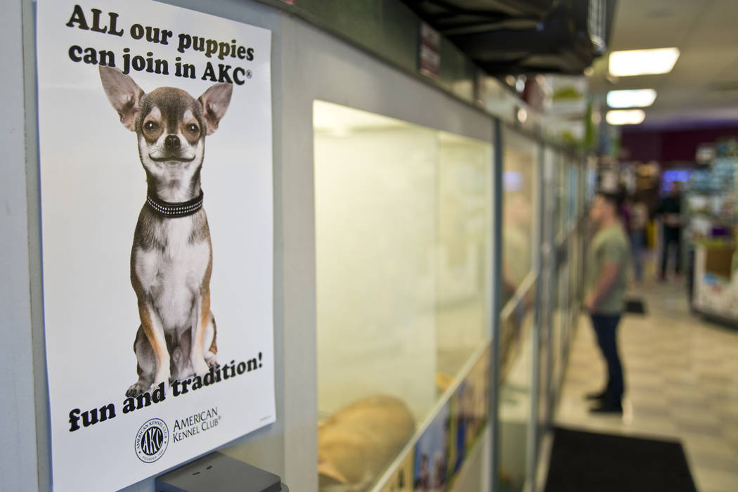 A sign advertises the pure-bred nature of the dogs for sale at Petland Las ac78c0fd0