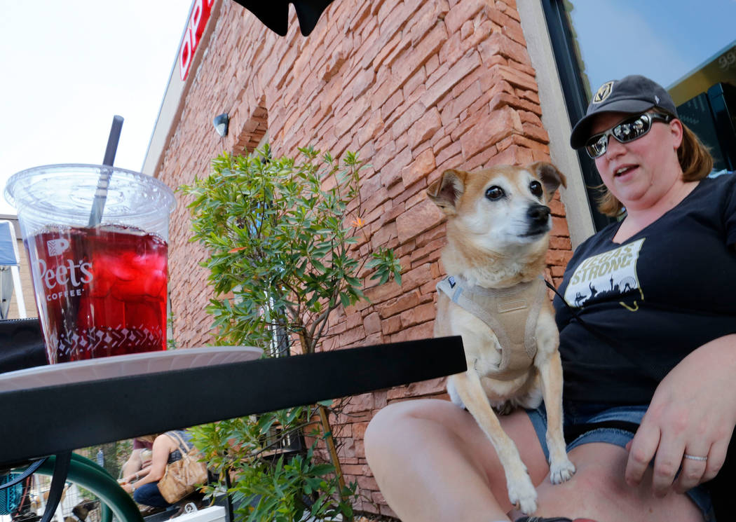 Gina Maxson of Las Vegas with her Chihuahua terrier Leo during a dog adoption event at Peet's Coffee on Discovery Drive in Las Vegas, Sunday, May 13, 2018. Maxson came to the coffee shop with her ...