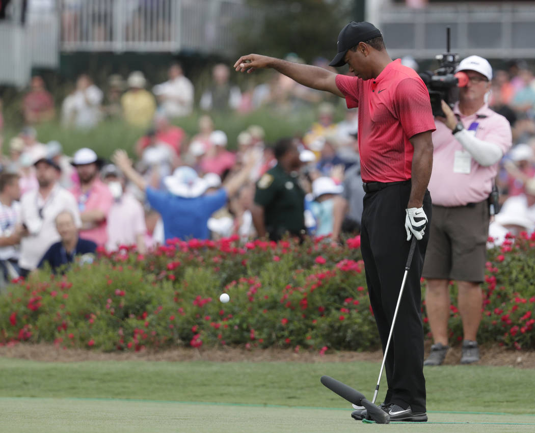 Tiger Woods takes a drop on the 17 hole, during the final round of The Players Championship golf tournament Sunday, May 13, 2018, in Ponte Vedra Beach, Fla. (AP Photo/Lynne Sladky)