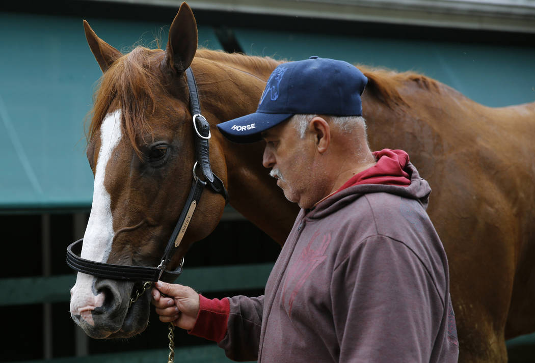 A groom walks Kentucky Derby winner Justify after a workout, Thursday, May 17, 2018, at Pimlico Race Course in Baltimore. The Preakness Stakes horse race is scheduled to take place Saturday, May 1 ...