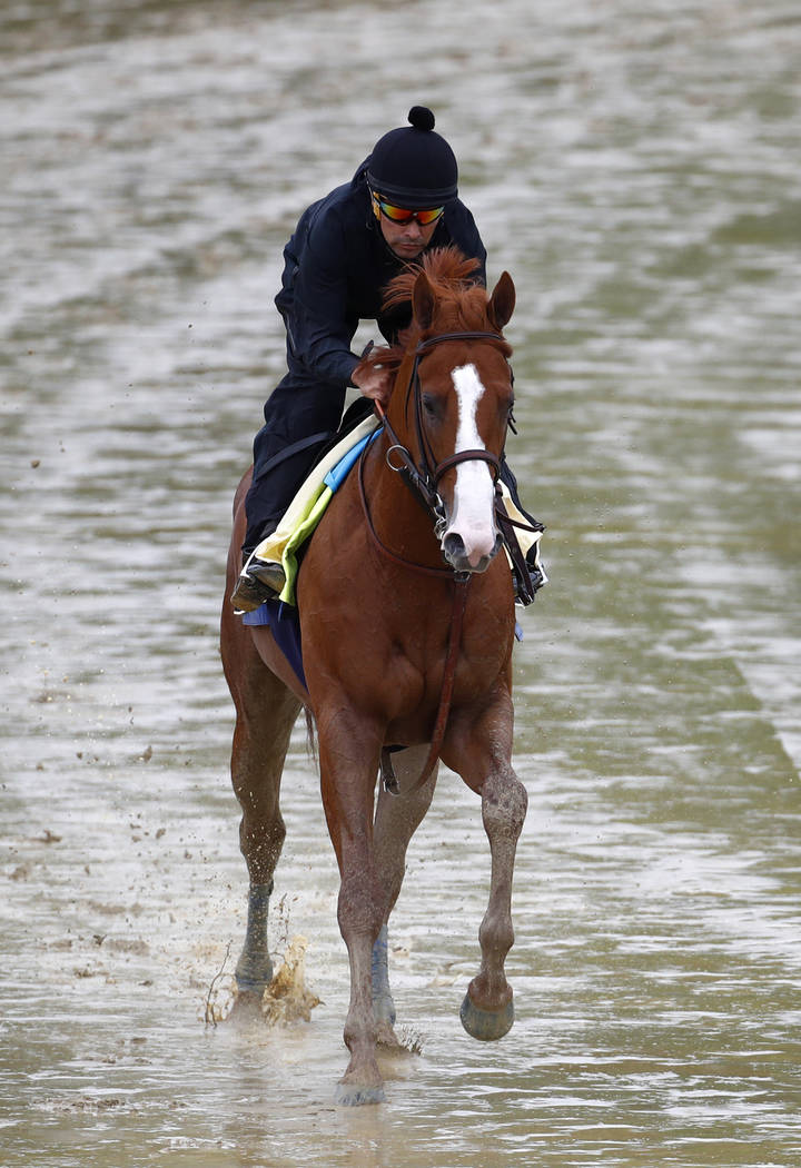 Kentucky Derby winner Justify, with exercise rider Humberto Gomez aboard, gallops around the track, Thursday, May 17, 2018, at Pimlico Race Course in Baltimore. The Preakness Stakes horse race is ...