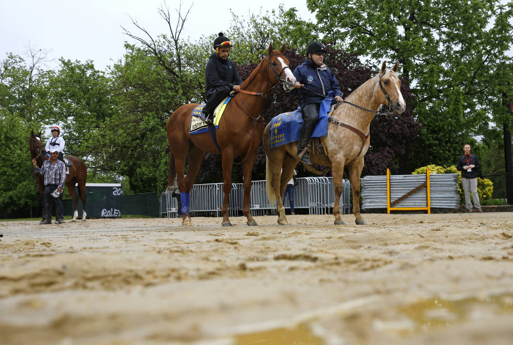 Kentucky Derby winner Justify, center, with exercise rider Humberto Gomez aboard, waits before being escorted to the track for a workout, Thursday, May 17, 2018, at Pimlico Race Course in Baltimor ...