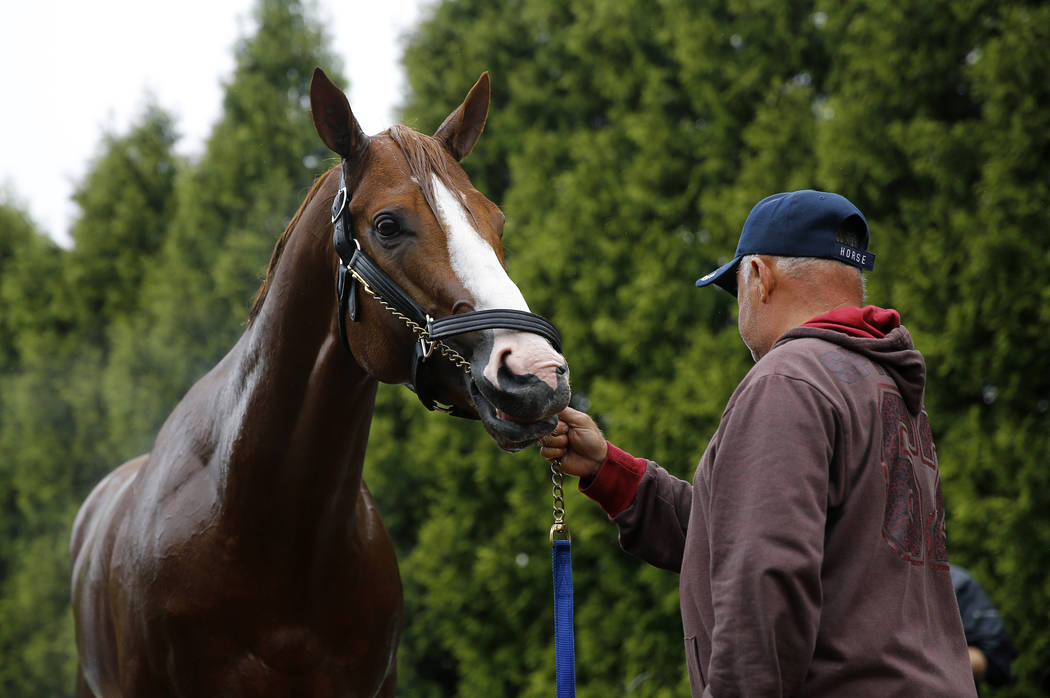 Kentucky Derby winner Justify stands outside a barn after a workout, Thursday, May 17, 2018, at Pimlico Race Course in Baltimore. The Preakness Stakes horse race is scheduled to take place Saturda ...