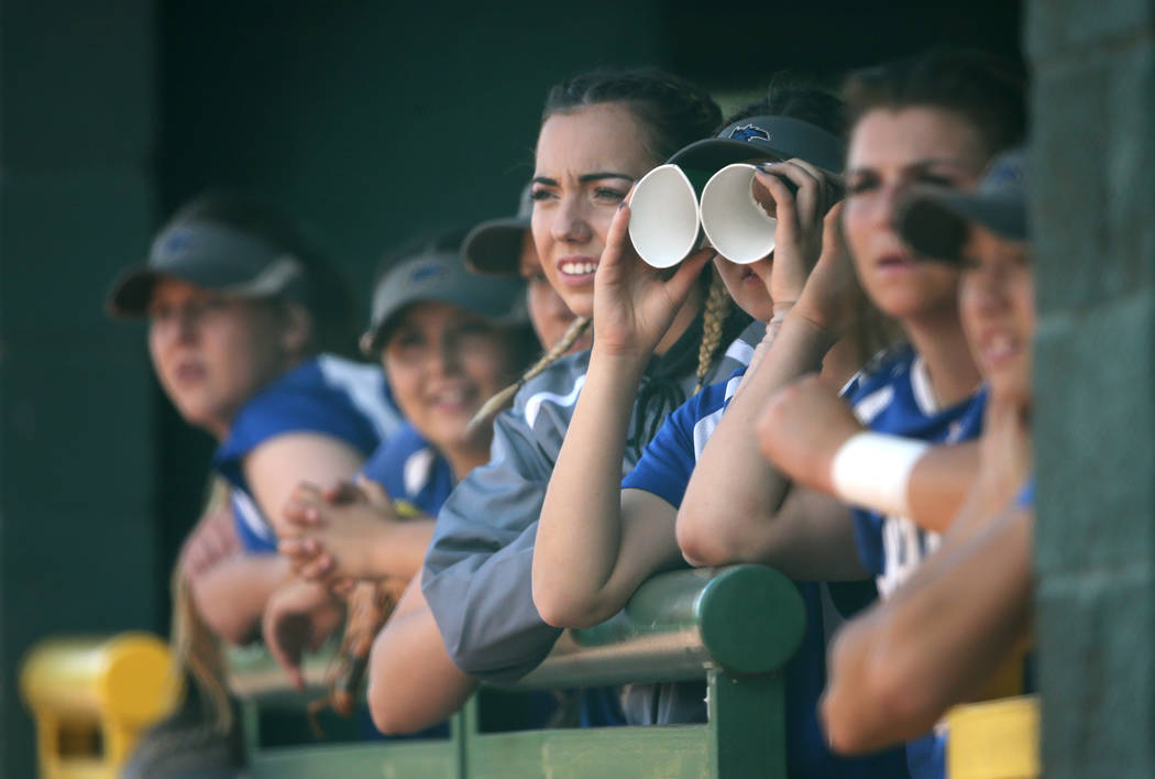 The Basic Wolves players watch the action against the Douglas Tigers in the NIAA 4A softball tournament, in Reno, Nev., on Thursday, May 17, 2018. Douglas won 8-5. Cathleen Allison/Las Vegas Revie ...