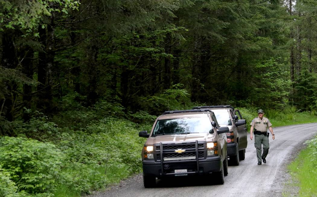 Washington State Fish and Wildlife Police leave the scene on a remote King County road near the site of a fatal cougar attack Saturday May 19, 2018 in East King County, Wash. (Alan Berner/The Se ...