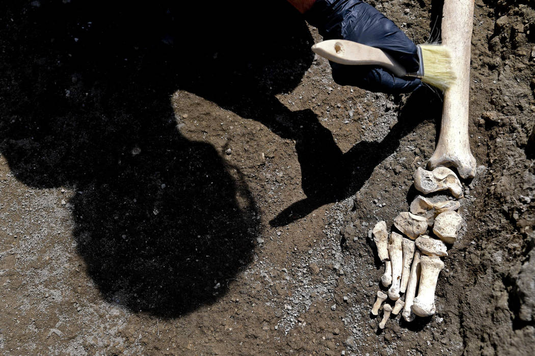 Anthropologist Valeria Amoretti works with a brush on a skeleton of a victim of the eruption of Mt. Vesuvius in A.D. 79, which destroyed the ancient town of Pompeii, at Pompeii' archeological site ...