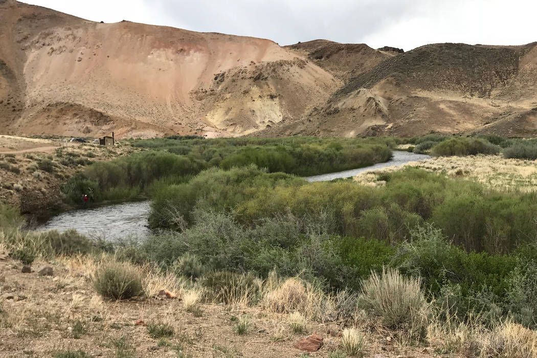 Even though Nevada is the driest state in the Union, all it takes is a little water to create a haven for mosquitoes. When recreating along Nevada's waterways be sure to use a quality insect repel ...