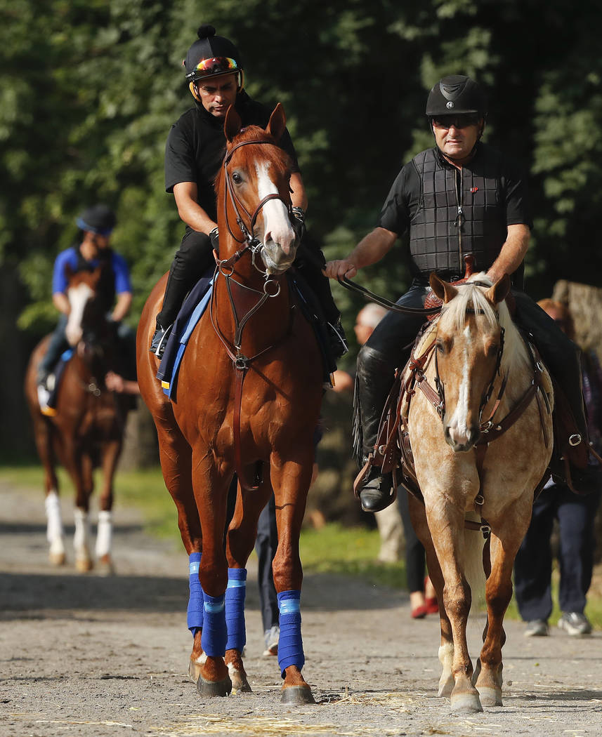 Triple Crown hopeful Justify, left, is led to the track for a workout at Belmont Park, Friday, June 8, 2018, in Elmont, N.Y. Justify will attempt to become the 13th Triple Crown winner when he rac ...