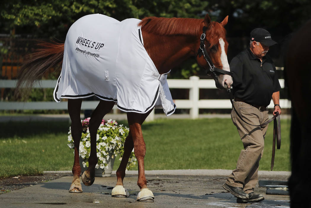 Triple Crown hopeful Justify is led out of the stable for a bath after a workout at Belmont Park, Friday, June 8, 2018, in Elmont, N.Y. Justify will attempt to become the 13th Triple Crown winner ...