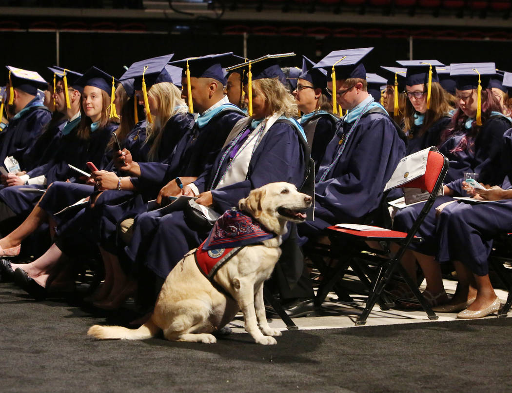 Share Legler of Los Angeles and her service dog Hayley attend the master's degree graduation ceremony of Western Governors University of Nevadaat the Thomas & Mack Center on Saturd ...