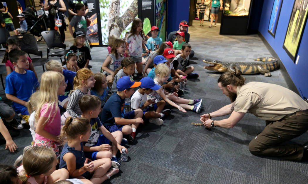 Head Zookeeper Shawn Adderley shows Leopard gecko to children at NatureÕs Ninjas, the traveling exhibit the Las Vegas Springs Preserve Monday, June 11, 2018. K.M. Cannon Las Vegas Review-Jour ...