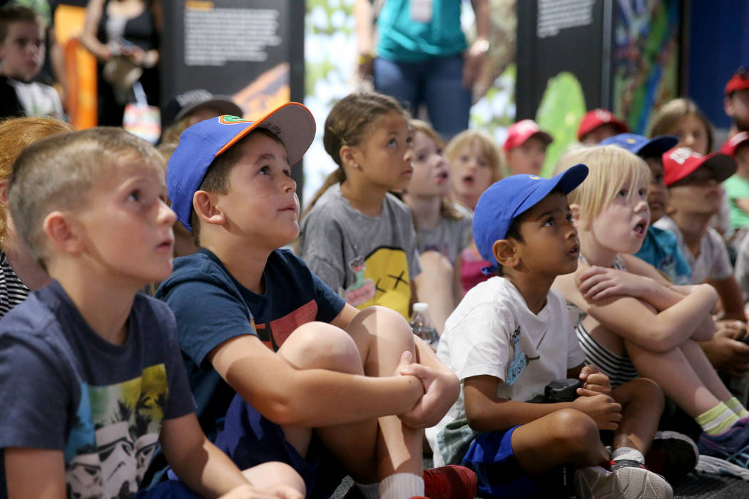 Children listen to a presentation from Head Zookeeper Shawn Adderley at NatureÕs Ninjas, the traveling exhibit the Las Vegas Springs Preserve Monday, June 11, 2018. K.M. Cannon Las Vegas Revi ...
