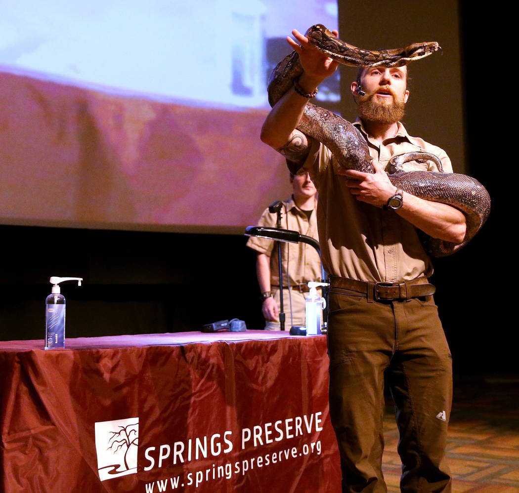 Head Zookeeper Shawn Adderley shows Julius Squeezer, a male Boa constrictor, during a show at NatureÕs Ninjas, the traveling exhibit the Las Vegas Springs Preserve Monday, June 11, 2018. K.M. ...