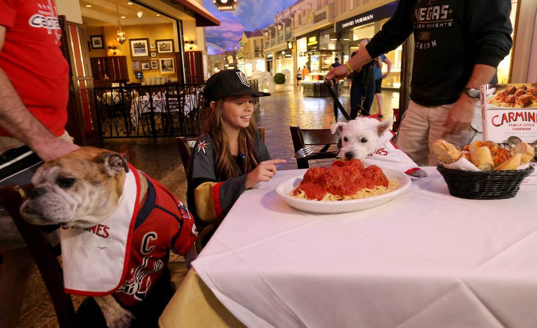 """Vegas Golden Knights fan Logan """"Logan the Girl with the Hat"""" Sokoloski, sits down for a meal with Bark-Andre Furry, right, and Washington Capitals fan Ovie the Bulldog at the Forum Shops ..."""