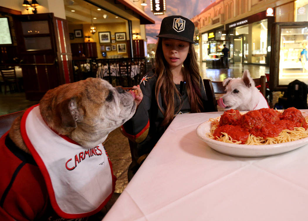 "Vegas Golden Knights fan Logan ""Logan the Girl with the Hat"" Sokoloski, sits down for a meal with Bark-Andre Furry, right, and Washington Capitals fan Ovie the Bulldog at the Forum Shops ..."