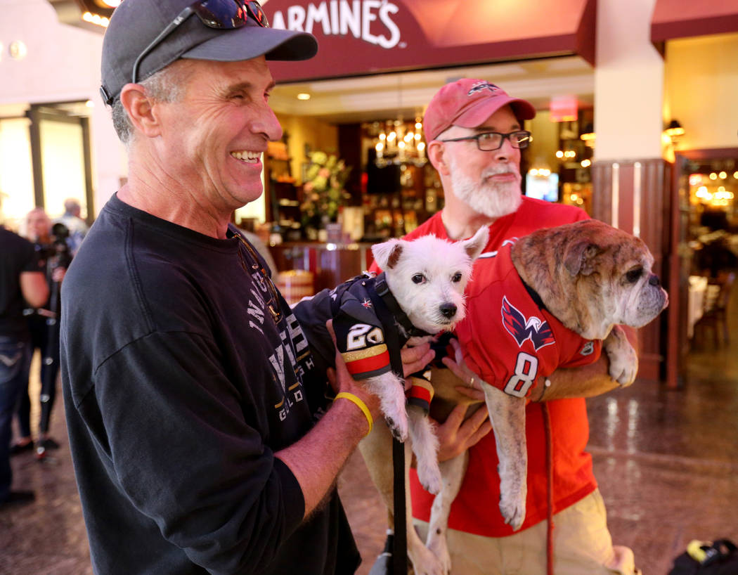 Vegas Golden Knights fans Rick Williams with Bark-Andre Furry, left, and Washington Capitals fans Mike Robertson with Ovie the Bulldog talk to a reporter at the Forum Shops at Caesars Tuesday, Jun ...