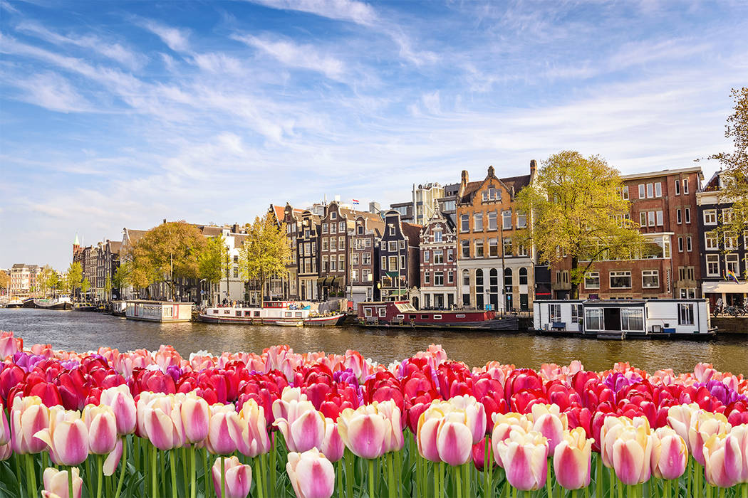 Amsterdam at canal waterfront with spring tulip flower, Amsterdam, Netherlands (Getty)