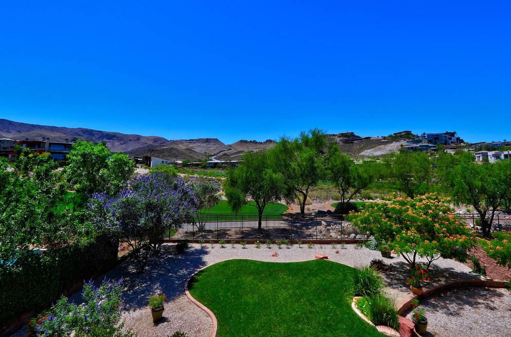 The backyard. (Ron Magee)