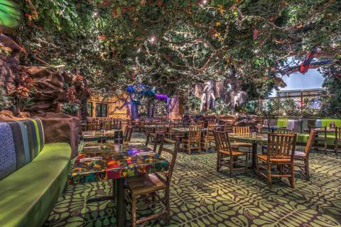 The interior of the Rainforest Cafe. (Rainforest Cafe)