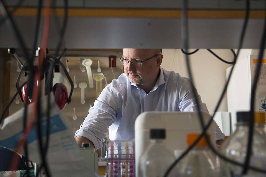This Aug. 8, 2013 photo, provided by Duke University shows Dr. Matthias Gromeier at his laboratory at Duke in Durham, N.C. Gromeier developed a modified poliovirus to attack glioblastoma brain tum ...
