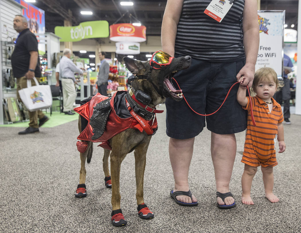 Shepard mix Shank, left, takes in the scene with owner April Suhr during SuperZoo, an annual trade show for pet retailers at the Mandalay Bay Convention Center on Tuesday, June 26, 2018, in Las Ve ...