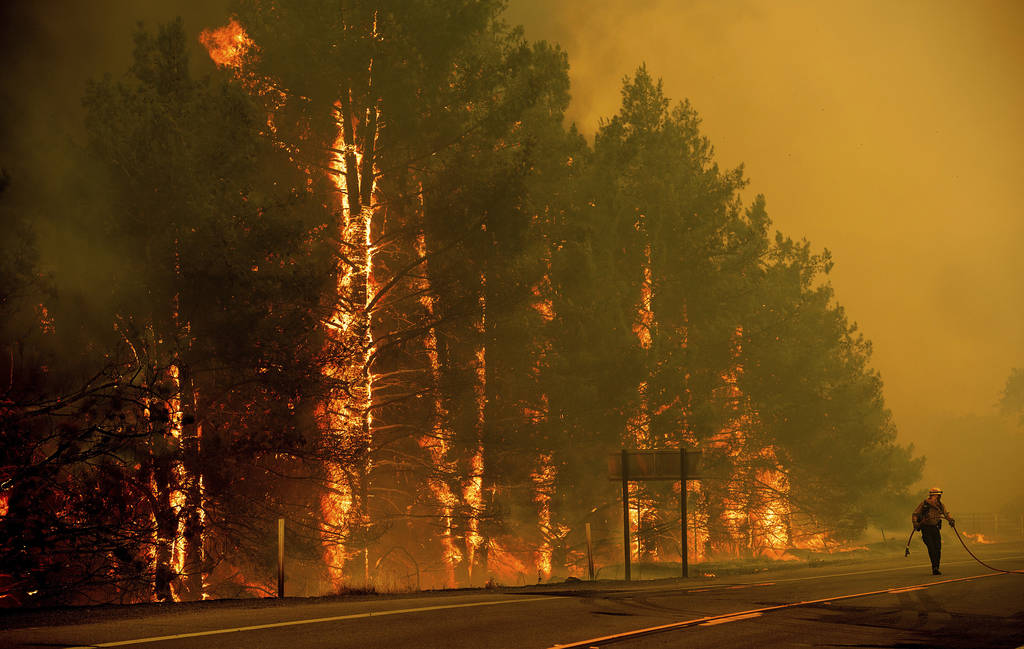 A firefighter scrambles to stop a wildfire as wind drives embers across Highway 20 near Clearlake Oaks, Calif., on Sunday, July 1, 2018. (AP Photo/Noah Berger)