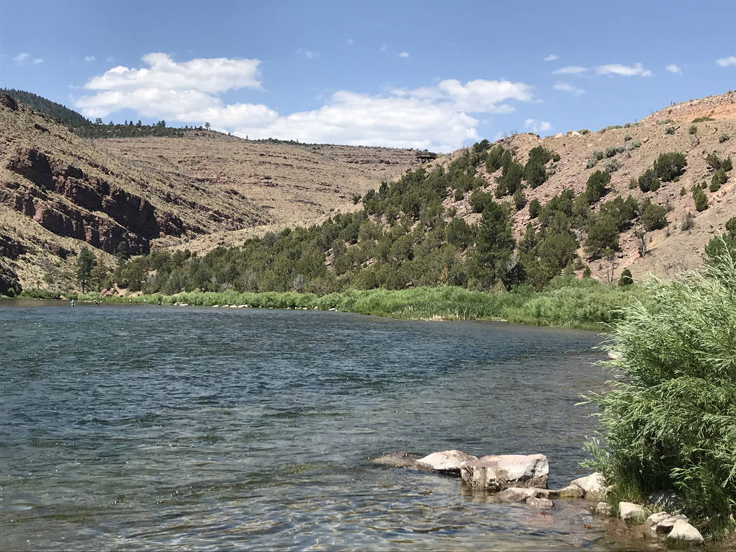 The Green River below the Flaming Gorge Dam is a fly-fisherman's paradise. (Deborah Wall)