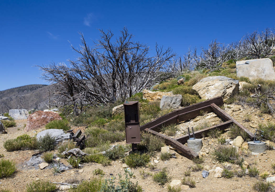 The remains of a trailhead for Griffith Peak in the Spring Mountains National Recreation Area on Friday, July 6, 2018. Chase Stevens Las Vegas Review-Journal @csstevensphoto