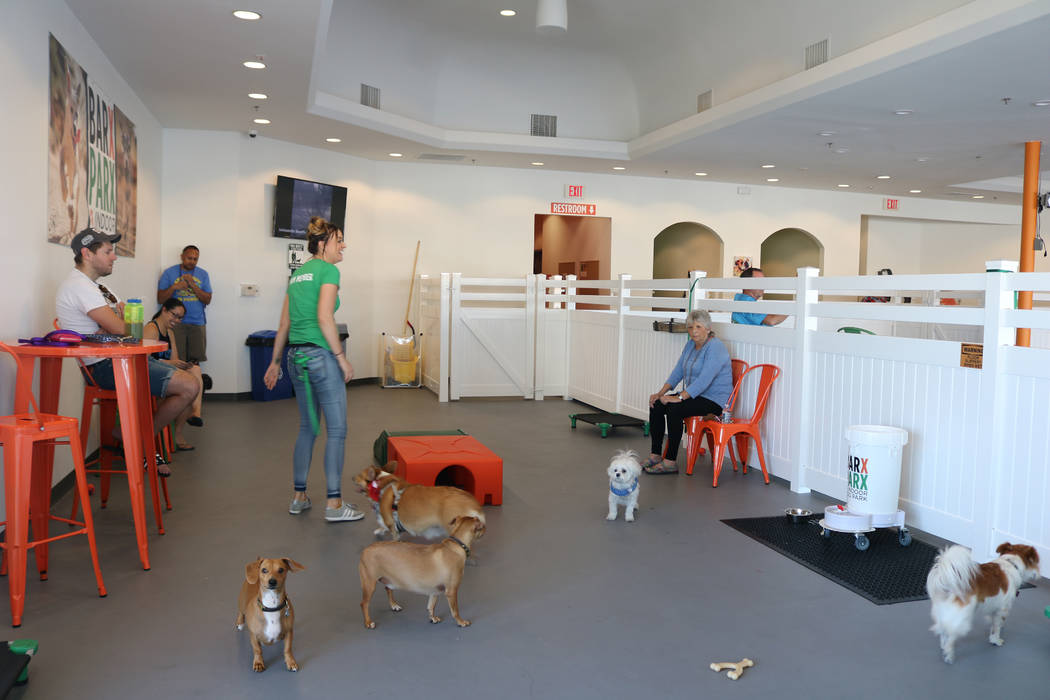 Dogs play at Barx Parx, a new indoor dog park, in Henderson on Wednesday, July 4, 2018. (Rochelle Richards/Las Vegas Review-Journal) @RoRichards24