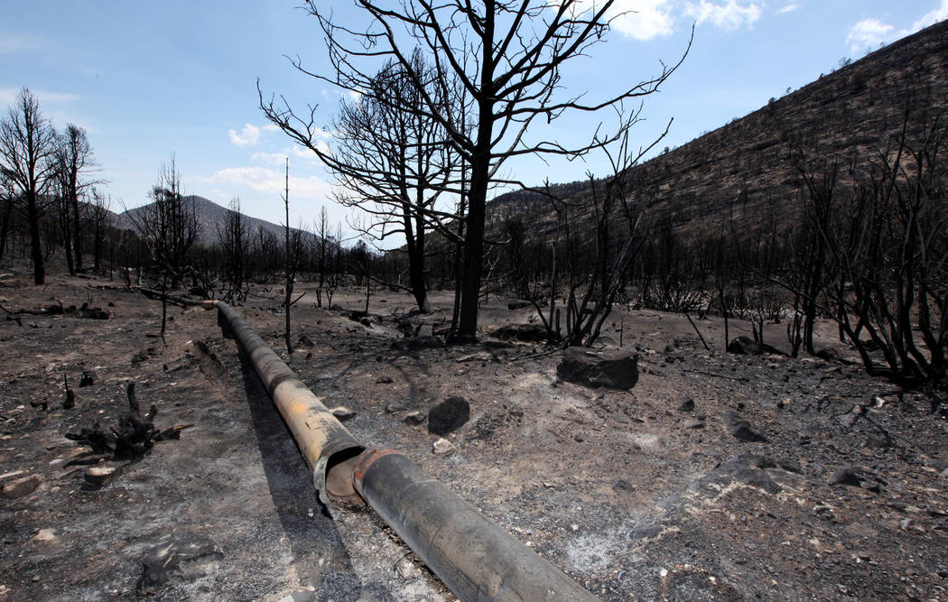 A break in the water line that supplies the roughly 20 residents of Trout Canyon with water in Trout Canyon on Tuesday, July 16, 2013. Trout Canyon resident Don Kubinski says he was told that ther ...