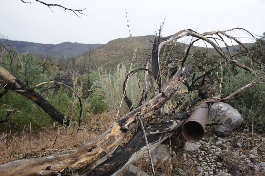 Remnants of the original pipeline for Trout Canyon's water supply, constructed by Elmer Bowman out of brass shell casings, no longer furnish water to the small community after heavy rains w ...
