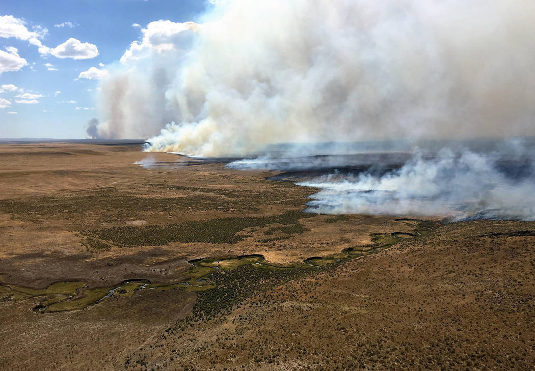 An aerial view of the northern flank of the Martin Fire burning in northern Nevada on July 10, 2018. (Bureau of Land Management)