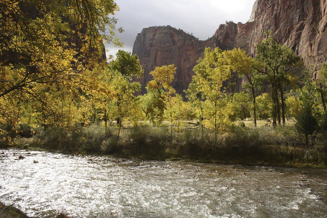 Zion National Park (Deborah Wall/Las Vegas Review-Journal)