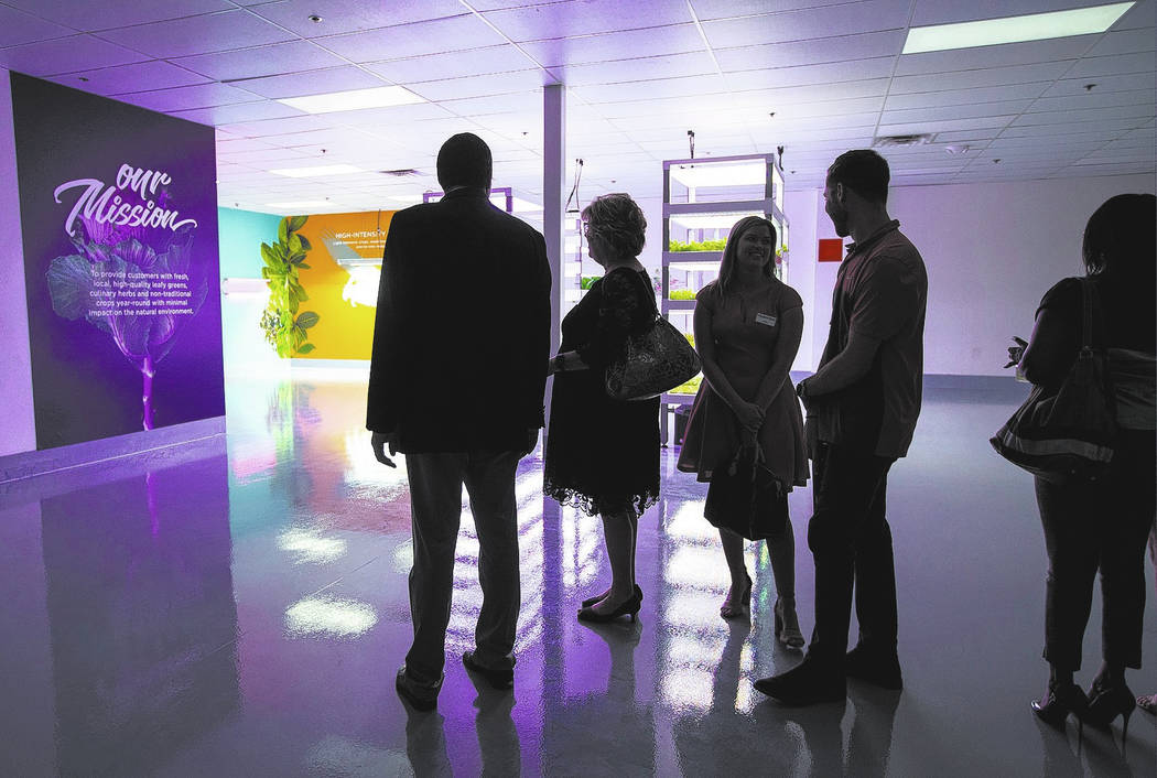 Attendees begin a tour during of Oasis Biotech, an indoor farming company, during the grand opening event in Las Vegas on Wednesday, July 18, 2018. Chase Stevens Las Vegas Review-Journal @cssteven ...