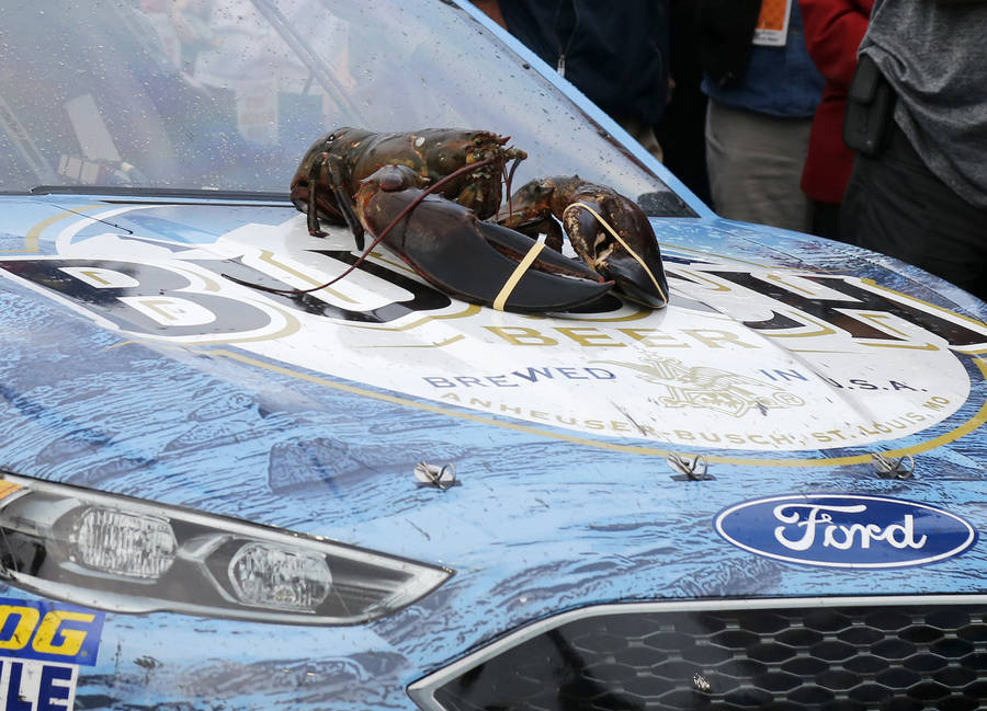 A lobster rests on the hood of the car of Kevin Harvick in victory lane after Harvick won the NASCAR Cup Series auto race Sunday, July 22, 2018, at New Hampshire Motor Speedway in Loudon, N.H. (AP ...