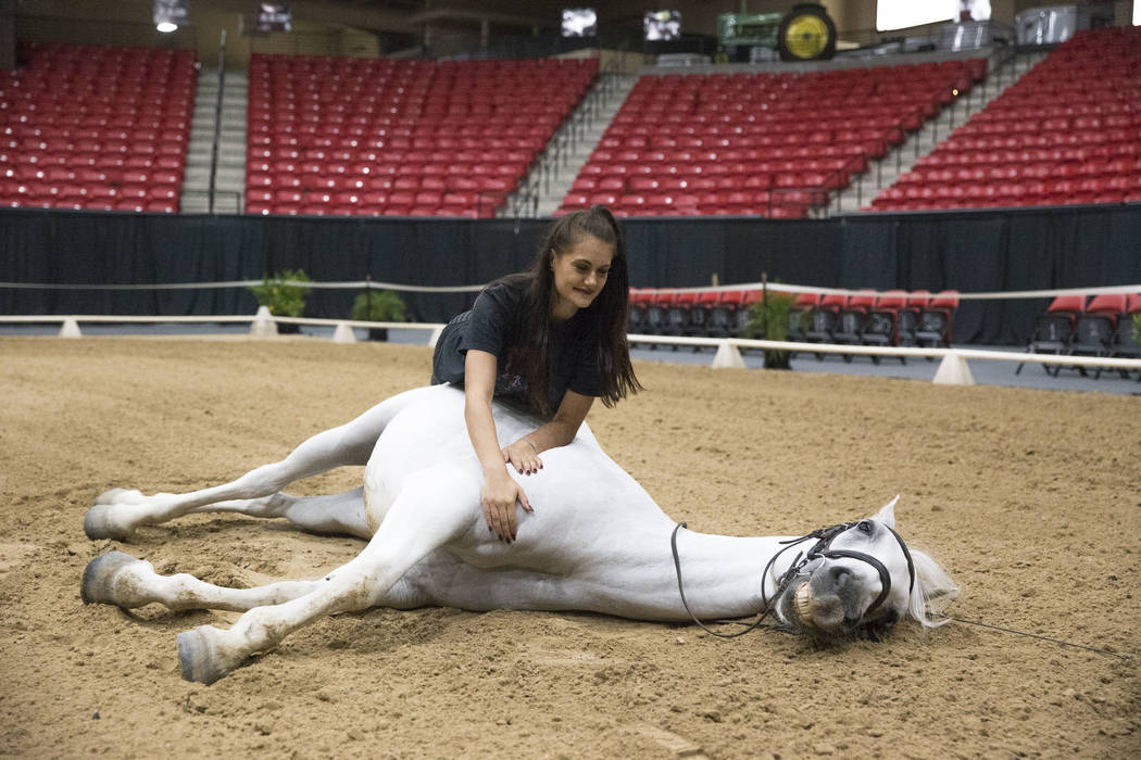 Australian horse rider Katharina Gasser, 20, and her Lipizzaner stallion Mozart demonstrate a piece that shows trust between a horse and the human at the South Point Arena & Equestrian Center ...