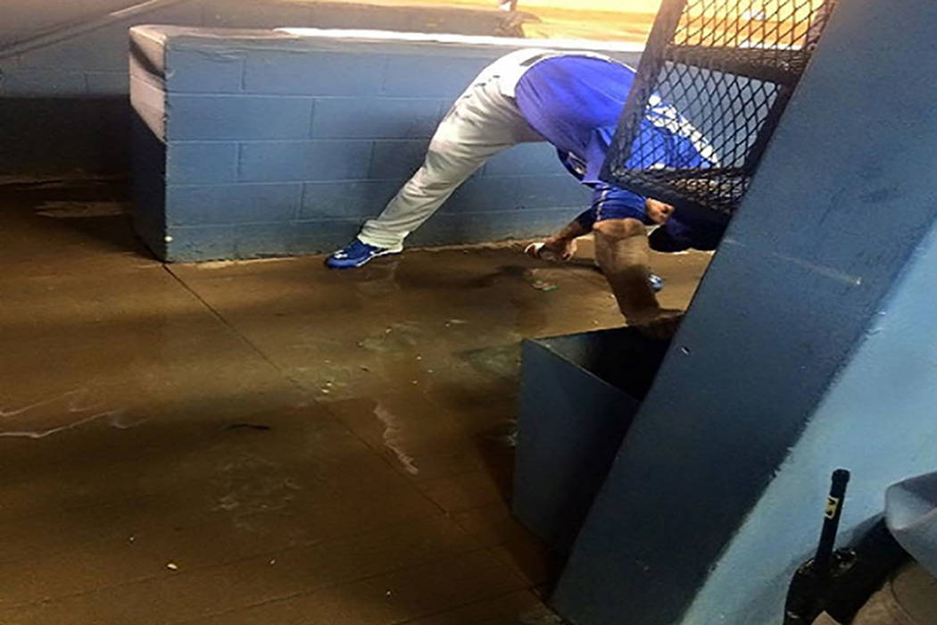 A sewage spill at Cashman Field in 2015 (51s Facebook)