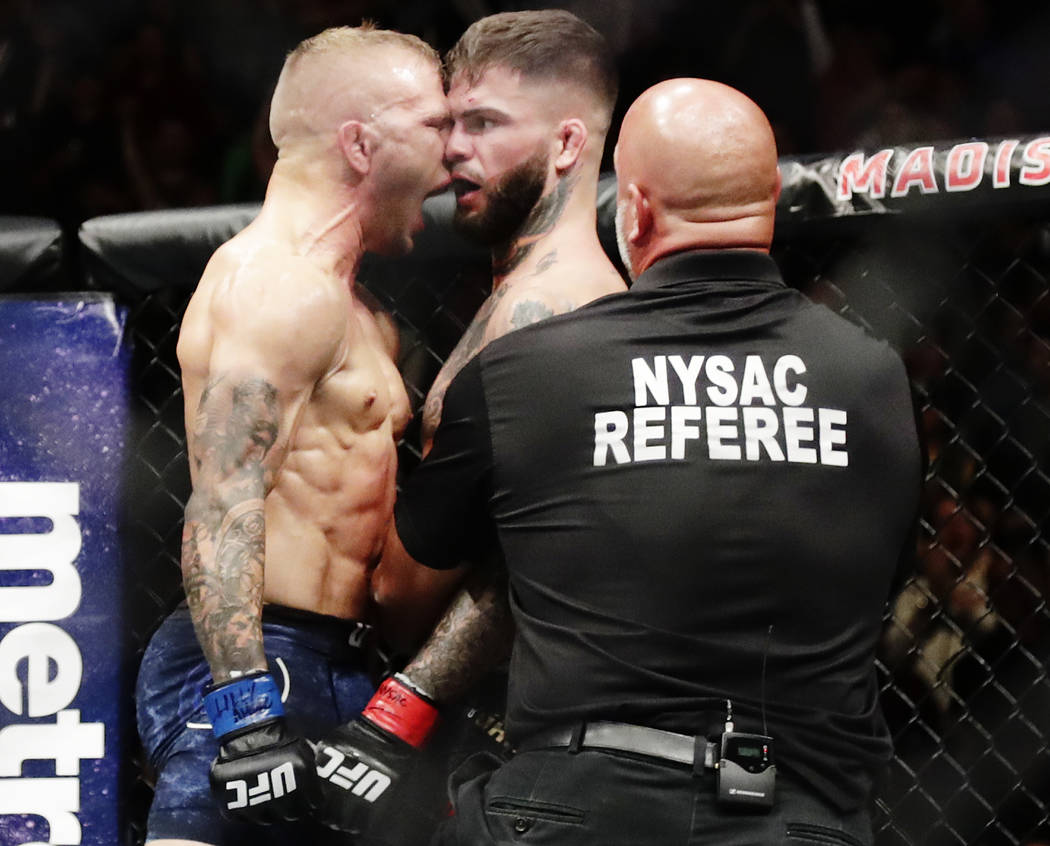 TJ Dillashaw celebrates after beating Cody Garbrandt, right, during a bantamweight title mixed martial arts bout at UFC 217 Sunday, Nov. 5, 2017, in New York. Dillashaw won the fight. (AP Photo/Fr ...