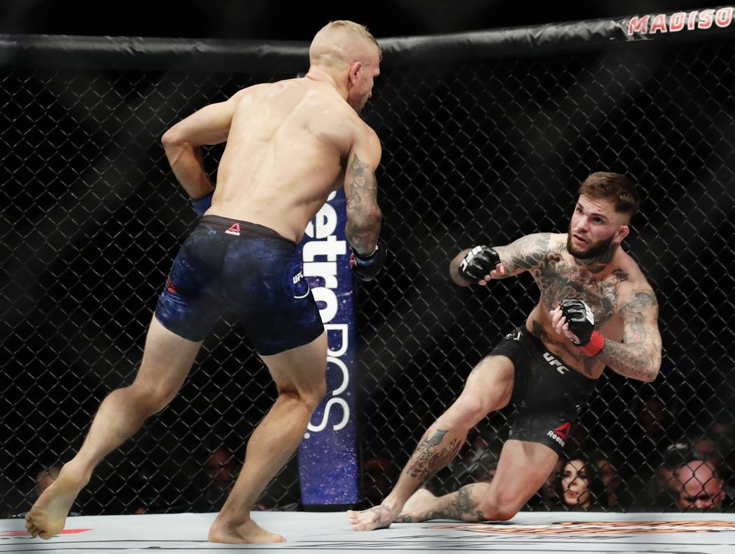 TJ Dillashaw, left, knocks down Cody Garbrandt during a bantamweight title mixed martial arts bout at UFC 217 Sunday, Nov. 5, 2017, in New York. Dillashaw won the fight. (AP Photo/Frank Franklin II)