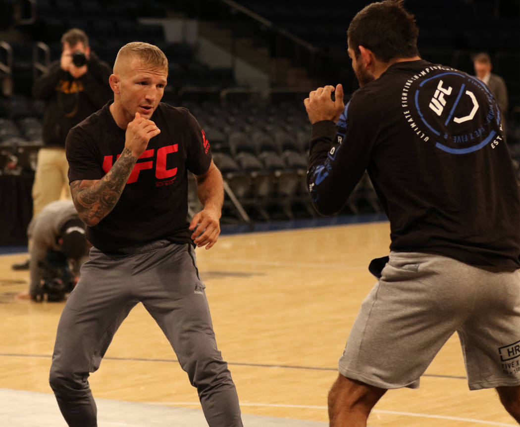 UFC bantamweight T.J. Dillashaw goes through drills at UFC 217 open workouts at Madison Square Garden in New York, New York, Wednesday, Nov. 1, 2017. Heidi Fang Las Vegas Review-Journal @HeidiFang